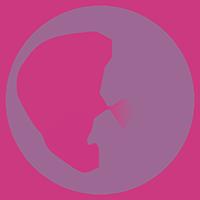Profitadó Consulting Logo